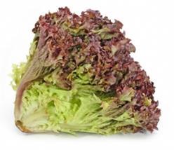 fodros saláta
